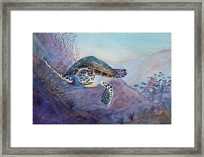 Under The Sea Framed Print by Teri  Jones