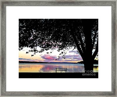 Under The Tree Framed Print by Margie Amberge