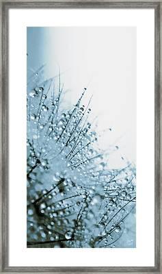 Under Water Framed Print by Lisa Knechtel