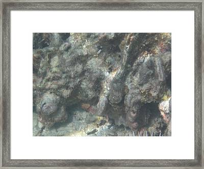 Underwater - Long Boat Tour - Phi Phi Island - 011351 Framed Print by DC Photographer