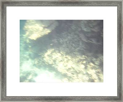 Underwater - Long Boat Tour - Phi Phi Island - 011382 Framed Print by DC Photographer