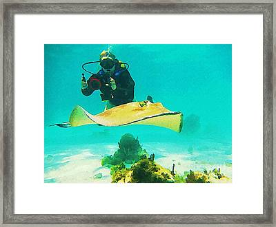 Underwater Photographer And Stingray Framed Print by John Malone Halifax Artist