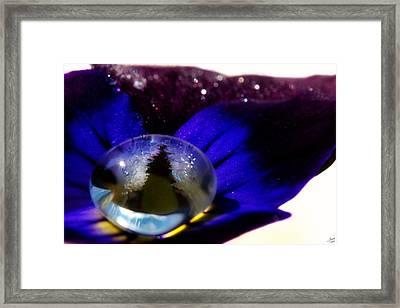 Underwater Universe Unfolding Framed Print by Lisa Knechtel