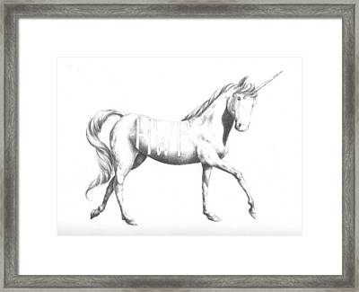 Unicorn Framed Print by Alexander M Petersen