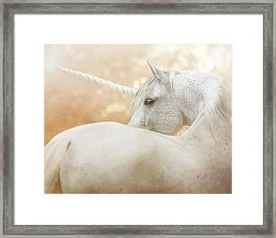 Unicorn Of Narnia Framed Print by Pamela Hagedoorn