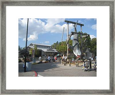 Universal Orlando Resort - 121231 Framed Print by DC Photographer