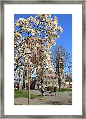 University Of Massachusetts Old Chapel And Library In Spring Framed Print by John Burk