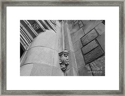 University Of Michigan Law Library Detail Framed Print by University Icons