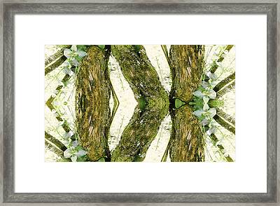 Unnatural 45 Framed Print by Giovanni Cafagna