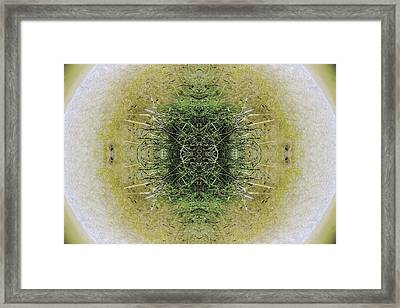 Unnatural 6.1 Framed Print by Giovanni Cafagna