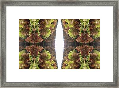 Unnatural 81 Framed Print by Giovanni Cafagna