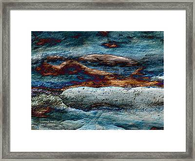 Untamed Sea 2 Framed Print by Carol Cavalaris