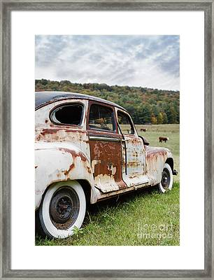 Until The Cows Come Home Framed Print by Edward Fielding