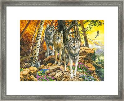 Wolf Mother And Cubs Framed Print by John Francis