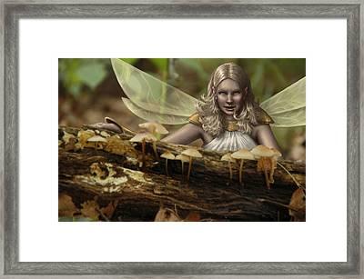 Untitled Framed Print by Mark Zelmer