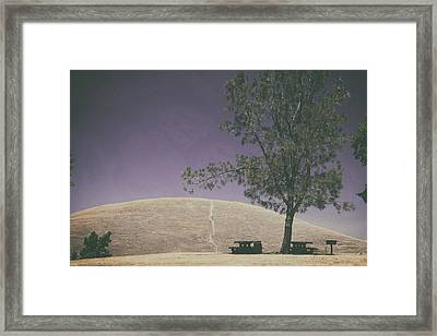 Up Into The Darkening Sky Framed Print by Laurie Search