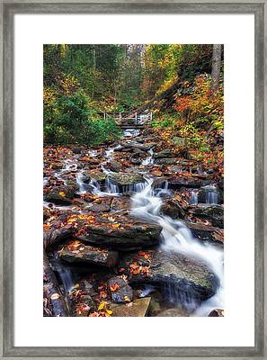 Up The Creek Framed Print by Mark Papke