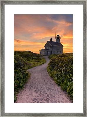Up To The Light Framed Print by Michael Blanchette