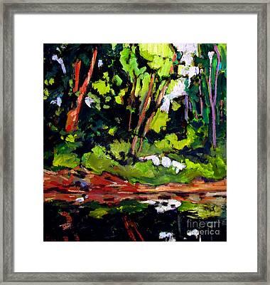 Sold Upper Lake Clay Deposit Framed Print by Charlie Spear