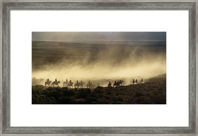 Usa, California, Bishop, Cattle Drive Framed Print by Ann Collins