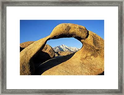 Usa, California, Eastern Sierra, Lone Framed Print by Ann Collins