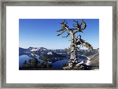 Usa, Crater Lake National Park Oregon Framed Print by Greg Vaughn