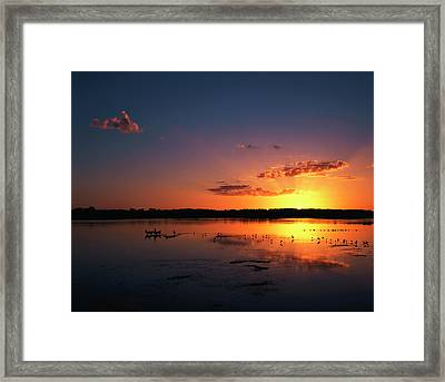 Usa, Florida, Jn Ding Darling National Framed Print by Adam Jones