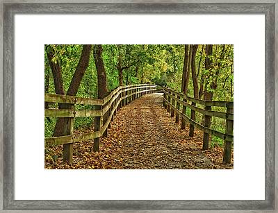 Usa, Indiana City Hiking Trail Framed Print by Rona Schwarz