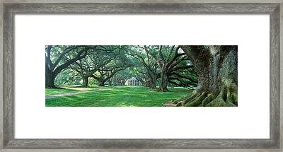 Usa, Louisiana, New Orleans, Oak Alley Framed Print by Panoramic Images