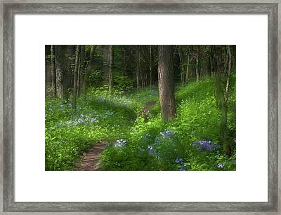 Usa, Pennsylvania, Cedar Creek Framed Print by Jaynes Gallery