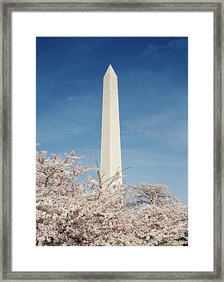 Usa, Washington Dc, View Of Washington Framed Print by Michele Molinari