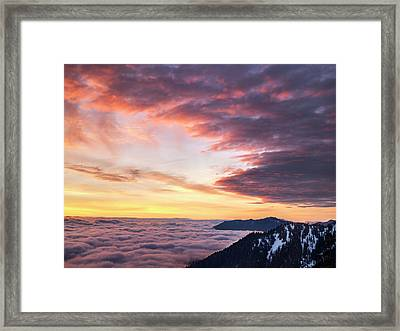 Usa, Washington State, Olympic National Framed Print by Ann Collins