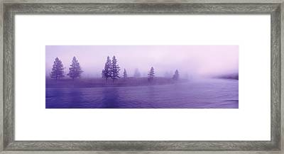 Usa, Wyoming, View Of Trees Lining Framed Print by Panoramic Images