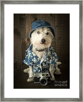Vacation Dog Framed Print by Edward Fielding