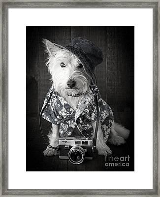 Vacation Dog With Camera And Hawaiian Shirt Framed Print by Edward Fielding