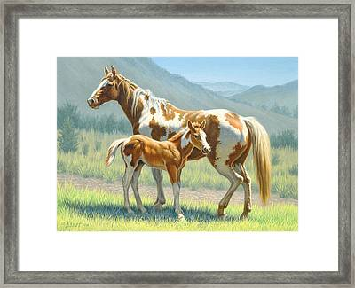 Valley Paints Framed Print by Paul Krapf