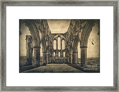 Vanishing Glory Framed Print by Evelina Kremsdorf