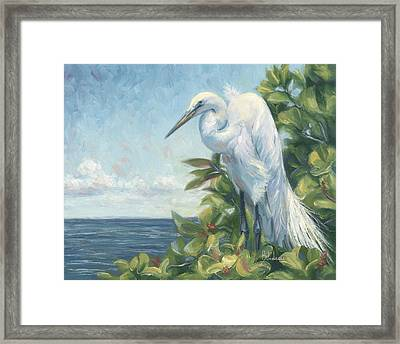 Vantage Point Framed Print by Lucie Bilodeau