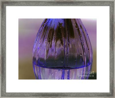 Vase Alone Framed Print by Amanda Barcon