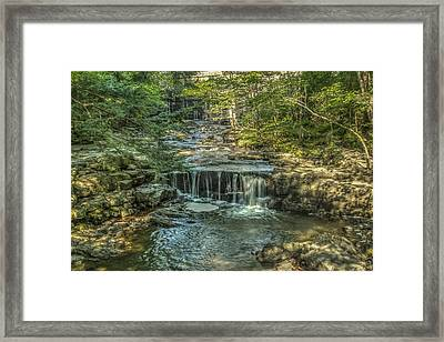 Vaughan Woods Stream Framed Print by Jane Luxton
