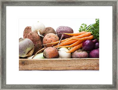 Veg Box Framed Print by Anne Gilbert