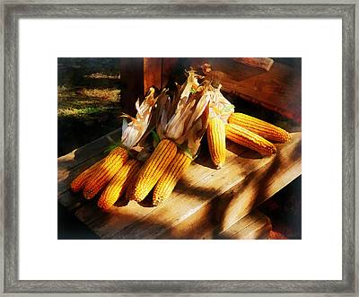 Vegetable - Corn On The Cob At Outdoor Market Framed Print by Susan Savad