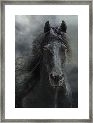 Veni Vidi Vici  Framed Print by Fran J Scott