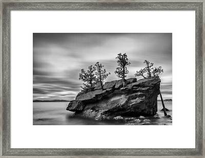Vermont Lake Champlain Boulder Trees Black And White Framed Print by Andy Gimino