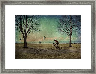 Vermont Lake Champlain Man Bicycle Summer Framed Print by Andy Gimino
