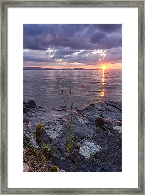 A Stormy Surprise   Framed Print by Andy Gimino