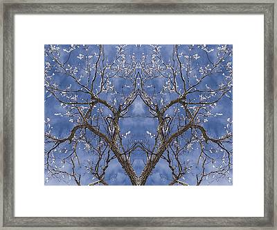 Vermont Winter Mirror Trees Snow Sky Framed Print by Andy Gimino