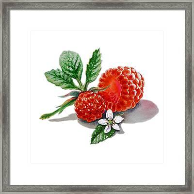 Artz Vitamins A Very Happy Raspberry Framed Print by Irina Sztukowski