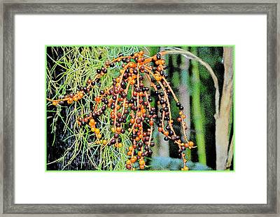 Vibrant Berries Framed Print by Sonali Gangane