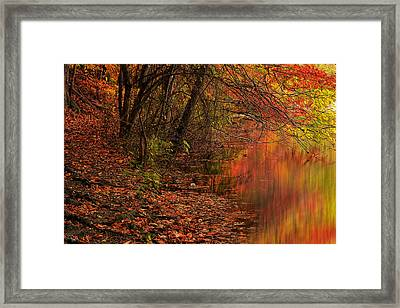 Vibrant Reflection Framed Print by Lourry Legarde